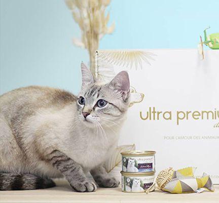 Chat près de la box d'été Ultra Premium Direct