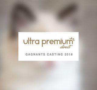 Les gagnants du casting 2016 d'Ultra Premium Direct